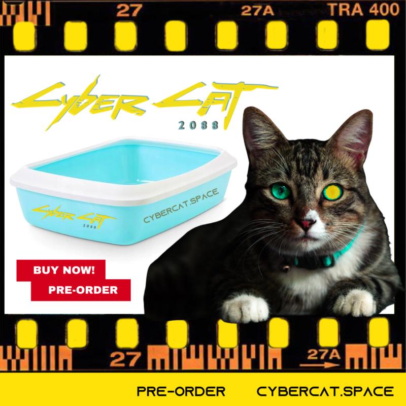 Kuweta CyberCat.space