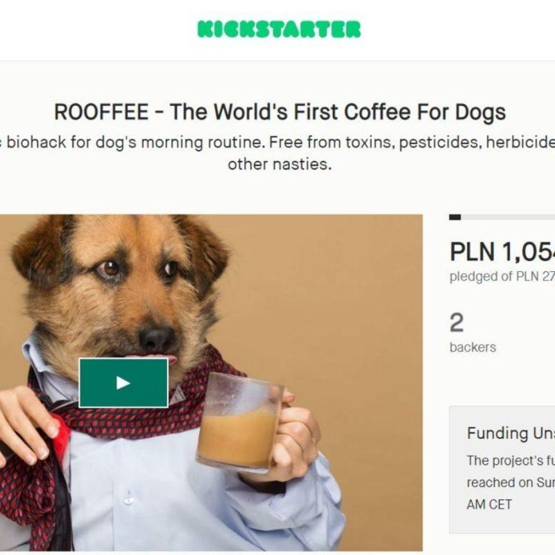 Kawa dla psa
